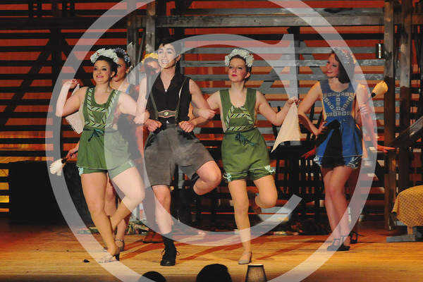 Local Theatre, Variety Shows & Performances